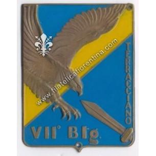 VII° BTG. Antiparacadutisti...