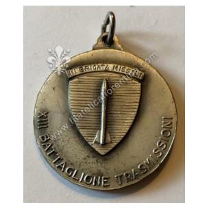 Medaglia del XIII°...