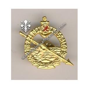 Distintivo d'onore mezzi...