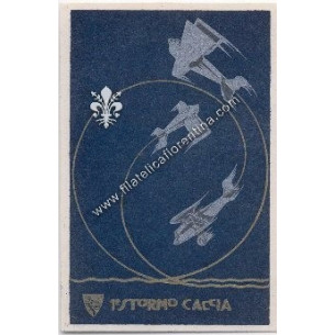 Cartolina 1° Stormo Caccia...