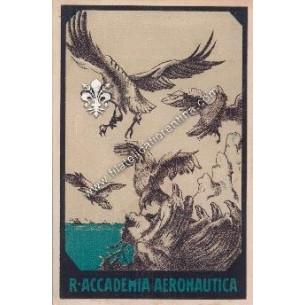Cartolina dell' Accademia...