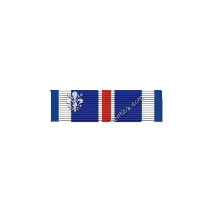 Distinguished Flying Cross...