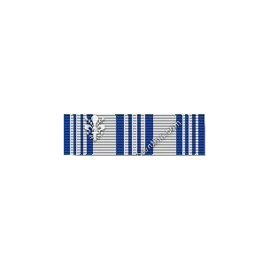 Air Force Achievement Medal...