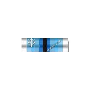Artic Service Medal...