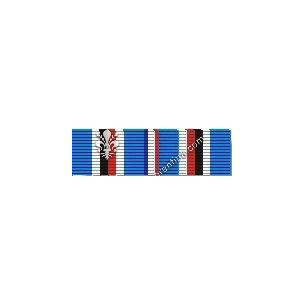 American Campaign Medal...