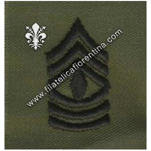 Gradi 1° sergente colletto...