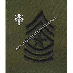 Gradi sergente maggiore -...