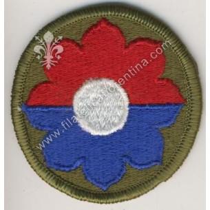 9° division