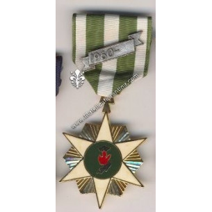Vietnam Campaign Medal -...