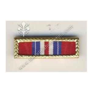 Army Valorous Unit Citation...