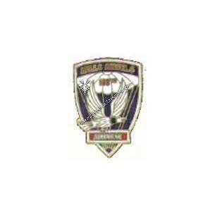 Crest 188° airborne infantry