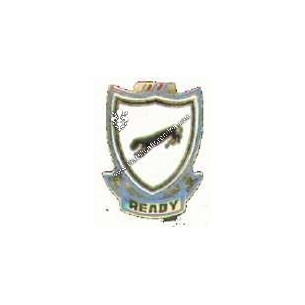 Crest 505° infantry reggimento
