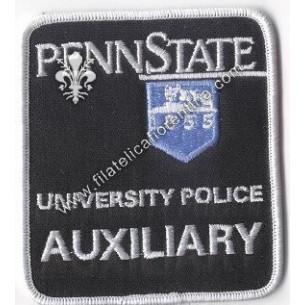 "Distintivo ""Penn State..."