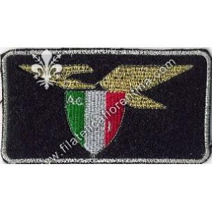 Aereo Club Italia