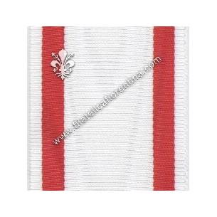 Medaglia Croce Rossa (?)