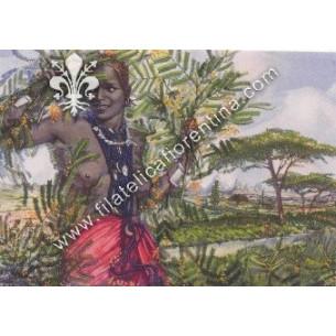 Fiori dell'Africa Orientale...