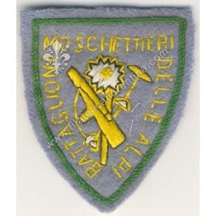 Distintivo della 22^...