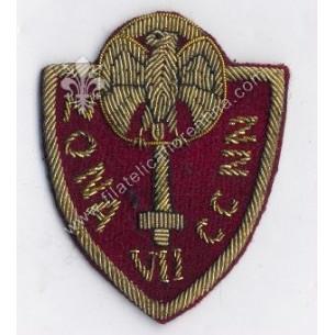 Distintivo della VII ZONA...