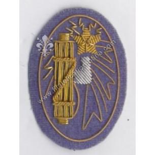 Distintivo da Funzionario...