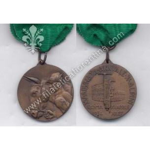Medaglia della XV Adunata...