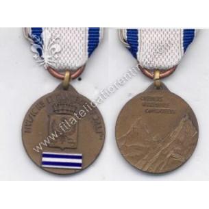 Medaglia della Divisione...