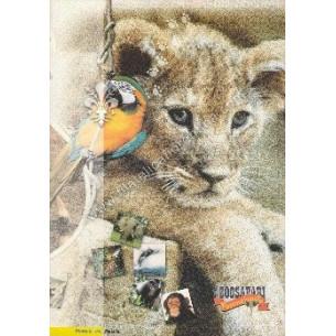 "Folder n 62 "" Zoo Safari di..."