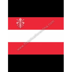 AUSTRIA - Euro flag...