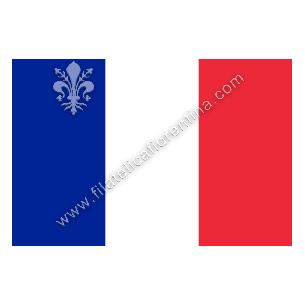 FRANCIA - Euro flag...