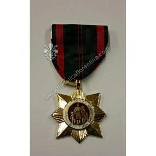 Vietnam Medals - Dan Vy Boi...