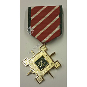 Vietnam Medals - Green version