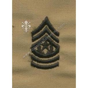 Gradi sergente maggiore...