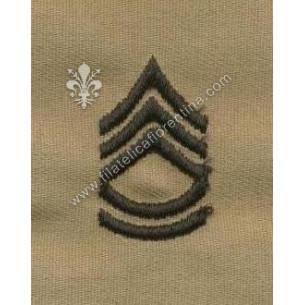 Gradi sergente di 1° classe...