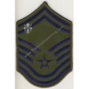 Air Force SENIOR MASTER...