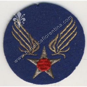 1° army air force - old style