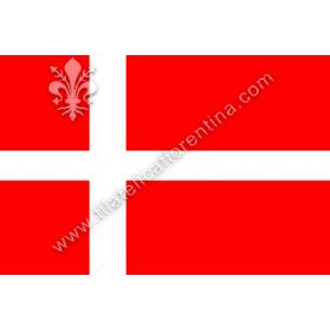 DANIMARCA - Euro flag...